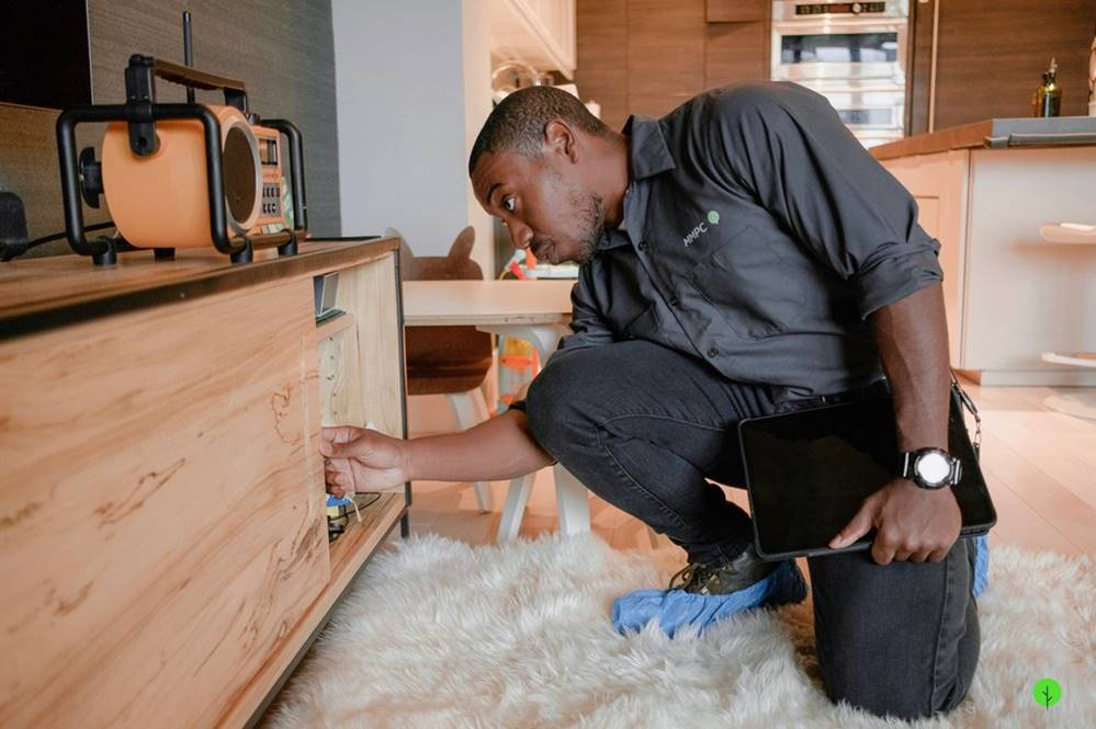 Pest control professional from MMPC inspects cabinet and furniture for signs of pests