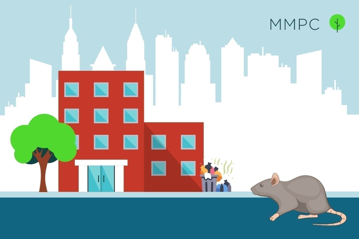 NYC Pest Guide for Mice and Rats by MMPC